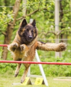 ...Stage Agility...